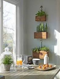garden all year with these amazing indoor planters cafemom
