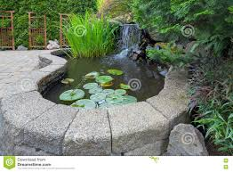 garden backyard pond with waterfall stock photo image 72778474