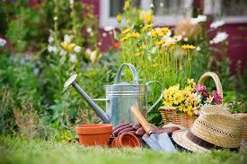 time to start your spring vegetable garden spring gardening