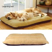Sofa Bed For Dogs by Compare Prices On Large Dogs Beds Online Shopping Buy Low Price