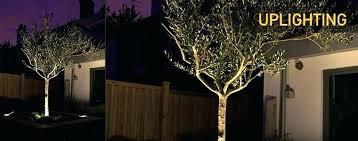 Landscape Lighting Set Solar Landscape Light Sets Solar Landscape Lights For Trees Solar