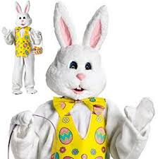 Easter Bunny Halloween Costume Amazon Bunny Deluxe Costume White Yellow Easter