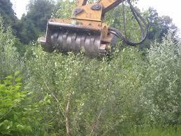 noleggio attrezzatura forestale cmi noleggio