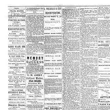 sayville cabinet for the sick the suffolk county news sayville n y 1888 current june 09