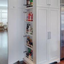 cabinet enclosure for refrigerator hidden refrigerator design ideas