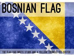 Flag Of Bosnia Bosnia And Herzegovina By Kahzrynkschmit