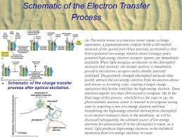 electron transfer process and membrane bioenergetics ppt download