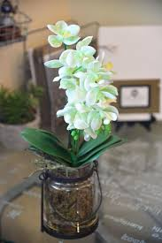 Fake Orchids Crazy Realistic Looking Artificial Orchids And Succulents With