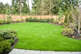 fresh backyard landscape design with grass 879