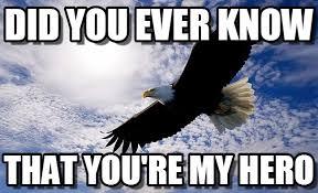 Hero Meme - did you ever know eagle meme on memegen