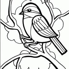 baby bird coloring pages 17 images bird unit