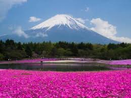top places to go in japan