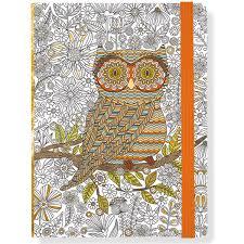 Livre à Colorier Hibou Peter Pauper  livre de coloriage pour adulte