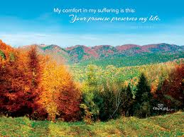 i will enter his gate with thanksgiving in my heart psalm 128 1 thank you lord for all the blessings you have bestowed
