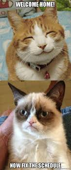 Welcome Home Meme - welcome home now fix the schedule grumpy cat vs happy cat make
