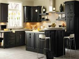kitchen design marvelous painting kitchen cabinets black best
