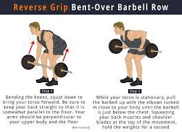 Bench Barbell Row Reverse Grip Barbell Row How To Do Benefits Muscles Worked