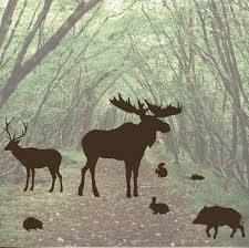 forest animal wall decal set moose mouse 1253
