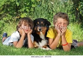 australian shepherd 60 minutes 2 children australian stock photos u0026 2 children australian stock