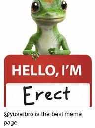 Best Meme Page - hello i m erect is the best meme page hello meme on me me