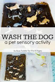 pet sensory activity wash the dog pre k pages