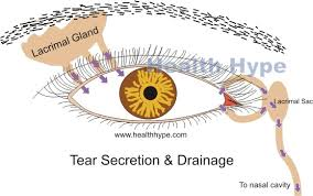 one sided eye tearing watery causes treatment healthhype com