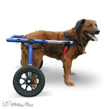 walkin wheels large wheelchair for handicapped pets