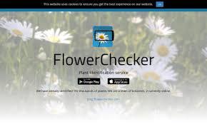 flowerchecker flowerchecker twitter