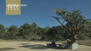 israeli solar trees destined for china