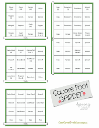 Square Meters To Square Feet by Best 25 Square Foot Gardening Ideas On Pinterest Square Foot