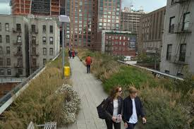 list of native plants list of texas native plants used in new york city landscapes