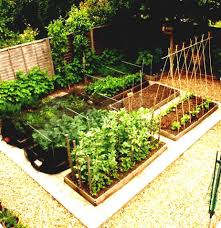 Kitchen Garden Design Ideas In Garden Design Ideas Layouts With Impressive Exterior Designing