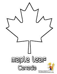 maple leaf template 100 images printable japanese maple leaf