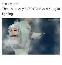 Fu Meme - hits blunt there s no way everyone was kung fu fighting kung fu
