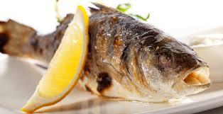 pesci alimentazione pesce e alzheimer ecco l alimentazione lo previene mercato