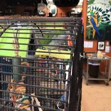 heat l for bird aviary the aviary bird shop 10 photos bird shops 22400 old dixie hwy