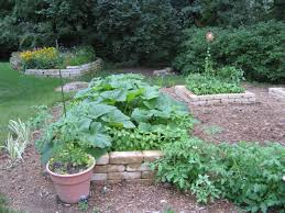 Kitchen Gardens Design Backyard Deck Ideas Pinterest Gardenabc Com