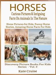 buy bug book for kids amazing pictures of bugs and insects learn