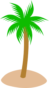 transparent cartoon palm tree free download clip art free clip