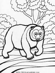 grizzly bear coloring printable coloring pages