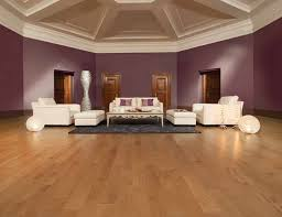 Hardwood Floor Living Room Living Room Inspiration Idea Hardwood Floor Living Room Ideas Of