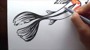 how to draw a koi fish simple and easy illustration