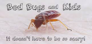 How Long Can Bed Bugs Live Without Air Pictures Of Bed Bug Bites On Kids Dengarden