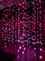 Zoo Lights In Houston by Worry Will Vanish U0027 In This Wonderland Pipilotti Rist U0027s Mfah
