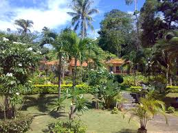 garden your stay paradise bungalows thailand