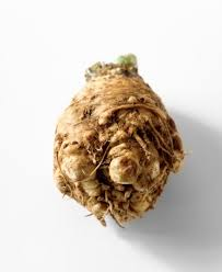 A Root Vegetable - a guide to winter root vegetables popsugar food