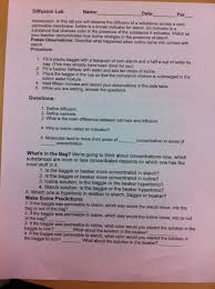Cell Membrane Worksheet Rudy U0027s Work Rudy And Perez Biology