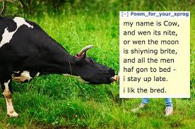 Lizard Toast Meme - someone wrote a poem about a cow and now everyone is doing it