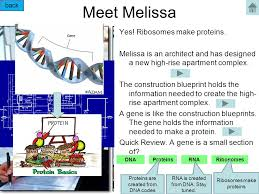 dna and transcription tutorial ppt video online download