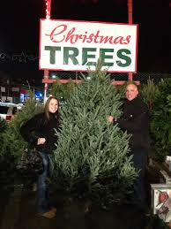 boston christmas trees open daily from thanksgiving to christmas